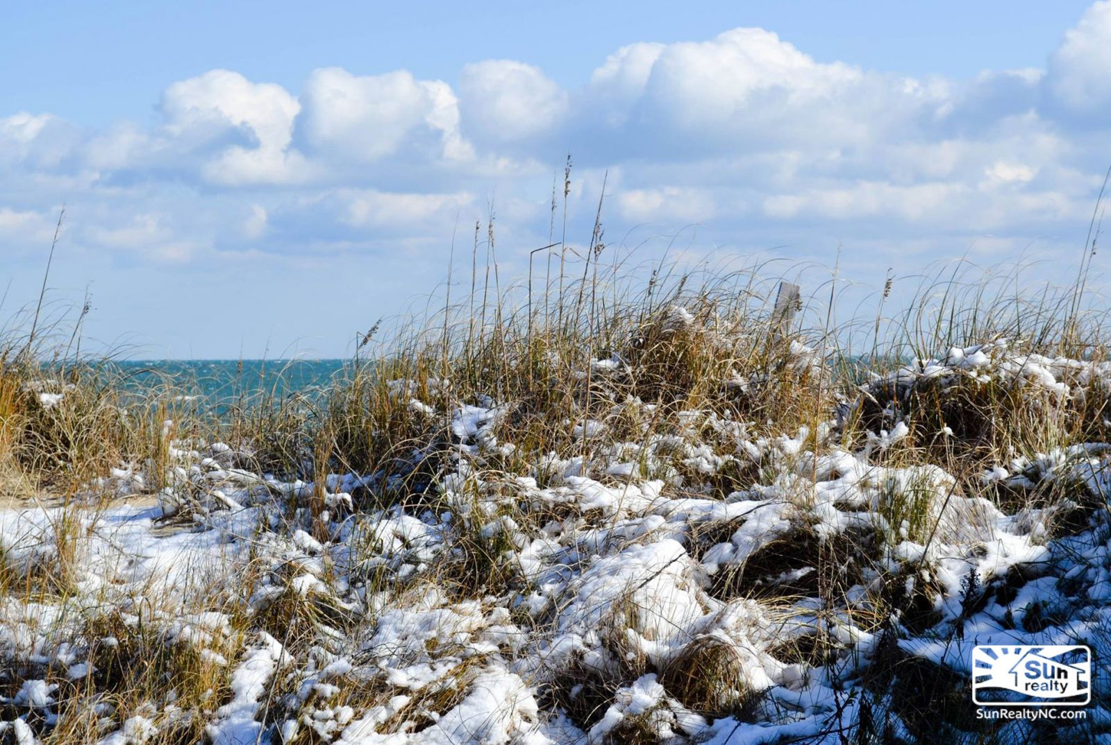 Snow on the beach grass, Outer Banks