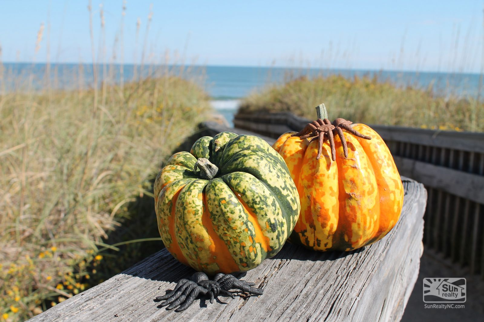Halloween on the Outer Banks
